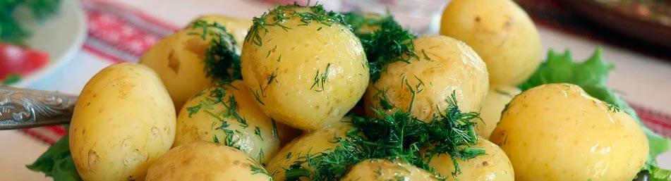 como-cocinar-patata de forma sana