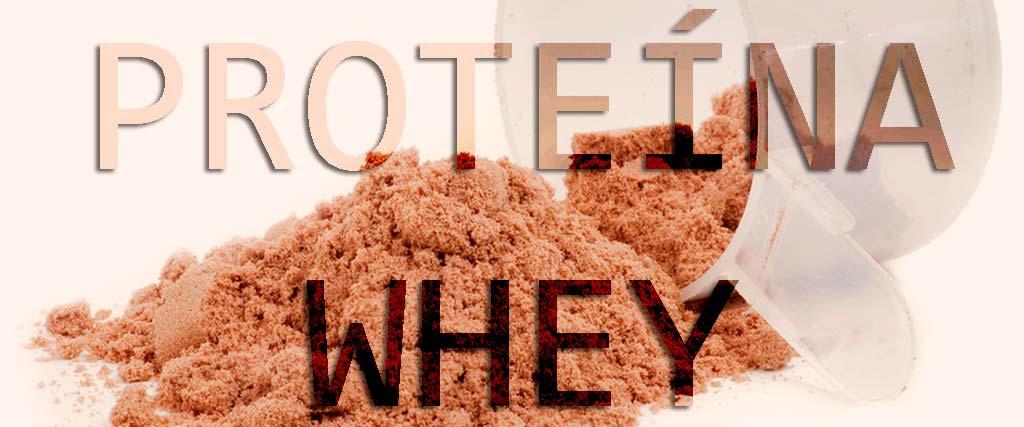 que-es-la-proteina-whey